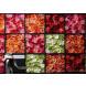 Sony SEL2470Z, Zoom-Objektiv (24-70 mm, F4 ZA OSS, Vario Tessar T*, E-Mount Vollformat, geeignet für A7 Serie) schwarz-07